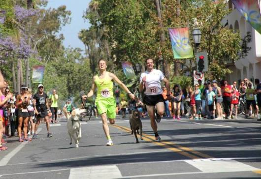 Costume Races, Night Runs, Mile Races, Oh My!