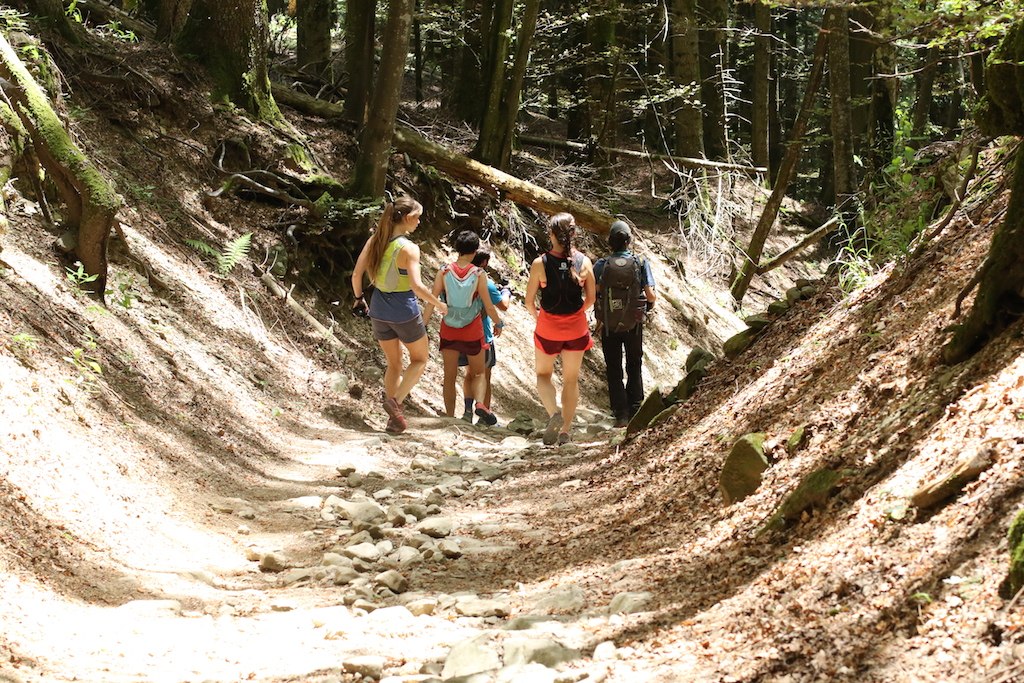 Trekking nel Parco delle Foreste Casentinesi – tra sacro e trail running