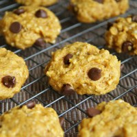 . vegan chocolate chip pumpkin oatmeal cookies .