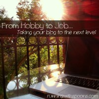 . from hobby to job - taking your blog to the next level .
