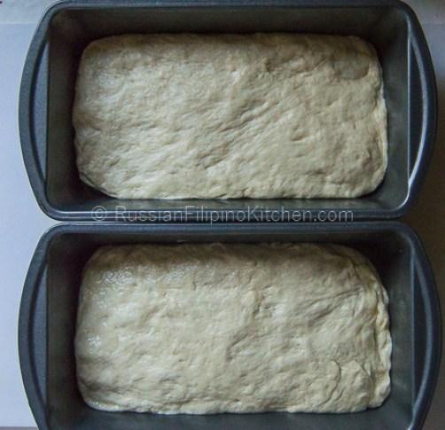 Everyday White Bread 24