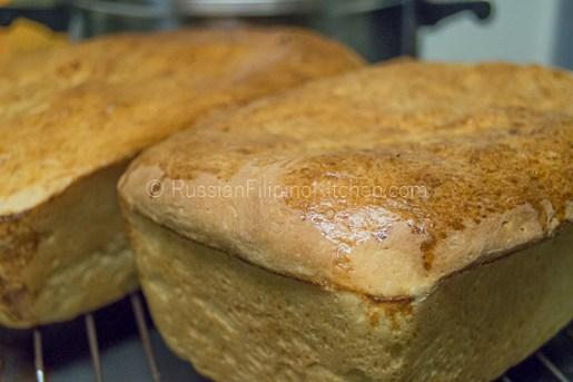 Everyday White Bread 30