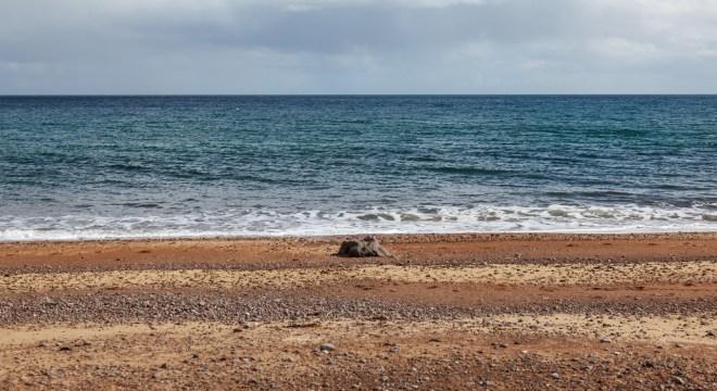 Colours On The Beach