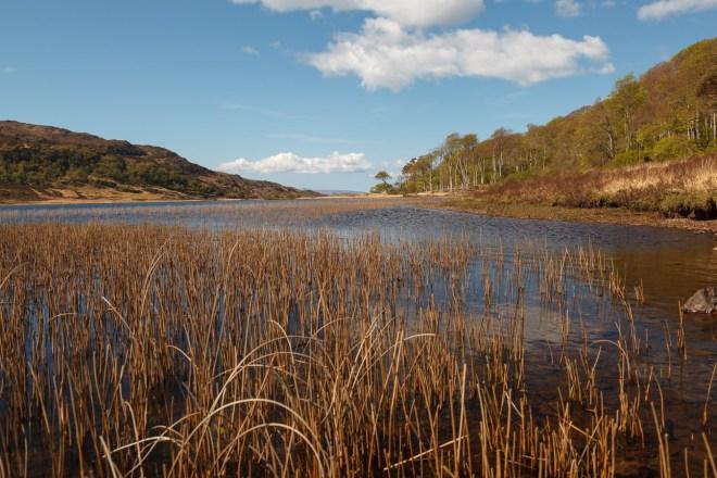 Loch A Ghlinne #2
