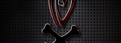 Voodoo-Red-Reflective-Logo
