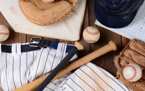 Sadler & Co. Baseball Insurance