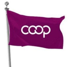 coop_flag-500x500