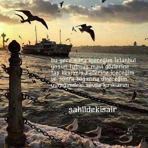 Ey koca İstanbul,Yine ben geldim gecelerine,Koltuğumun altına efkarımı,Cebime de umutlarımı koydum geldim.Gavur Ali'nin limon kasalarından yapılmış,Balıkçı barınağı olmasa sende çekilmezsin ya hani,Neyse;Bu gece sana içeceğim İstanbul,Yosun tutmuş mavi gözlerine,Taş kesilmiş kaderine içeceğim.Ve sonra boğazına dizeceğim,Yüreğimde ki sevda kırıklarını…#sinanyıldızlı #sahildekisair #farkındamısın #İstanbul