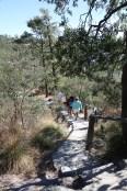 morning hike