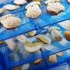 きのこを美味しく保存する|キノコ 5つの保存方法