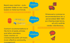 Einstein Features Across The Clouds (Infographic)