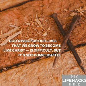 NIV Lifehacks 197 become like Christ