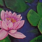 waterlily-low