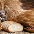Las maravillas del Teff (cereal ideal, incluso para celiacos)