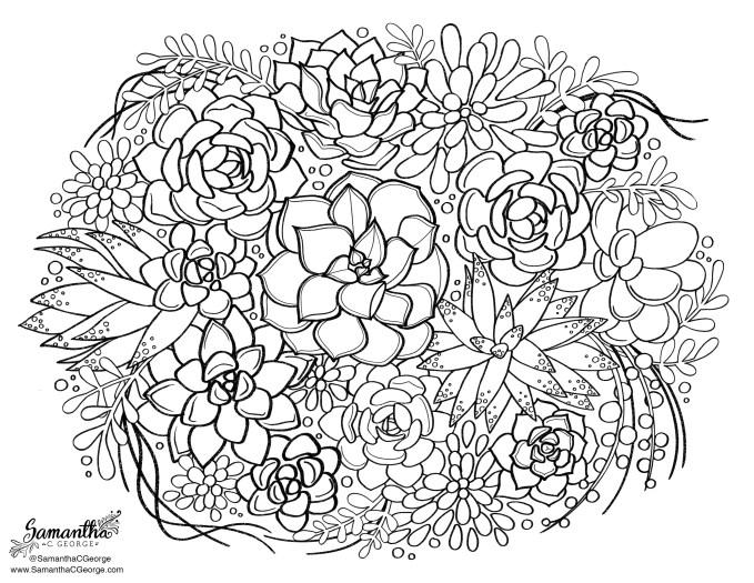 Succulent Arrangement Free Coloring Page | Samantha C George