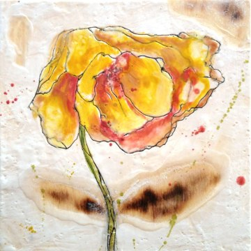 "Burnt Yellow Poppy 10""x10"""