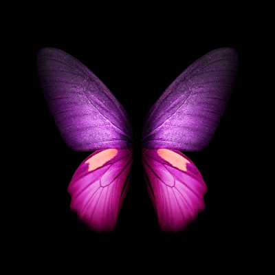 You can download the Live Wallpapers from the Galaxy Fold right here - SamMobile