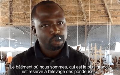 Lancement officiel de la première webTV pour mobiles d'Afrique francophone