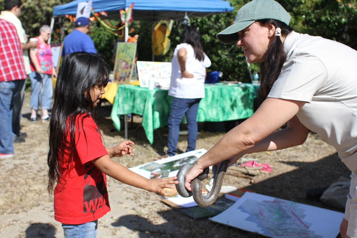 The Rancho Mission Viejo booth invited attendees to meet a friendly rosy boa during Sunday's Panhe event at the San Mateo Campground. Photo by Andrea Swayne