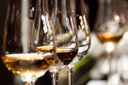 Casa_Wellnes_Wine_and_Olive_Oil_Tasting_Casa_Romantica