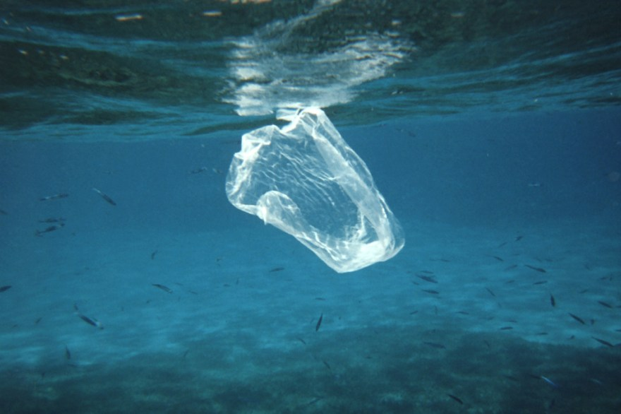 Plastic pollution is one of the biggest problems facing the world's oceans; thankfully, you can do something about it. Photo: Courtesy of NOAA