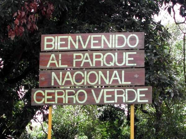 .CerroVerdeNationalPark (1)