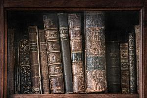 old-books-on-the-shelf-19th-century-library-gary-heller