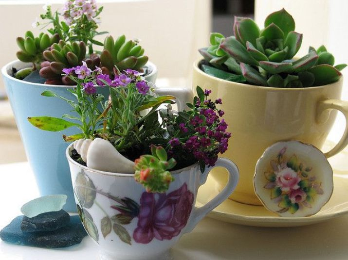 effetto shabby vasi : fiori,vasi,shabby,arredo shabby,giardinaggio,stufa,cucina economica