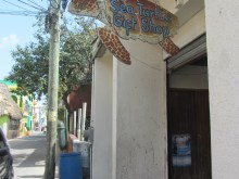 Sea Turtle Gift Shop Belize