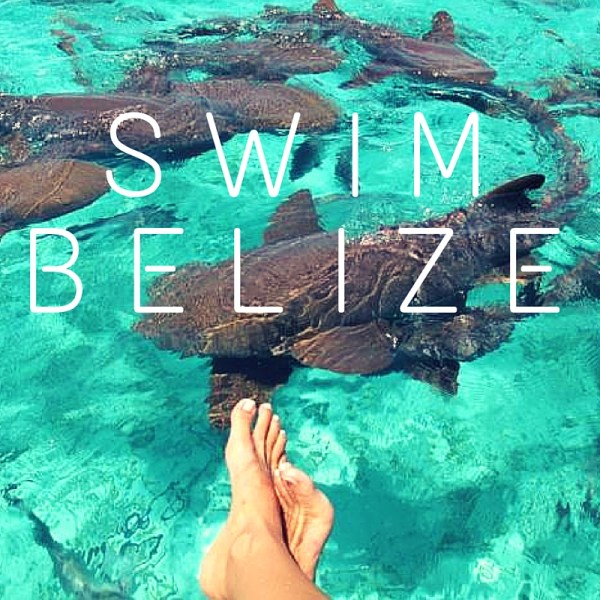 SWImBELIZE