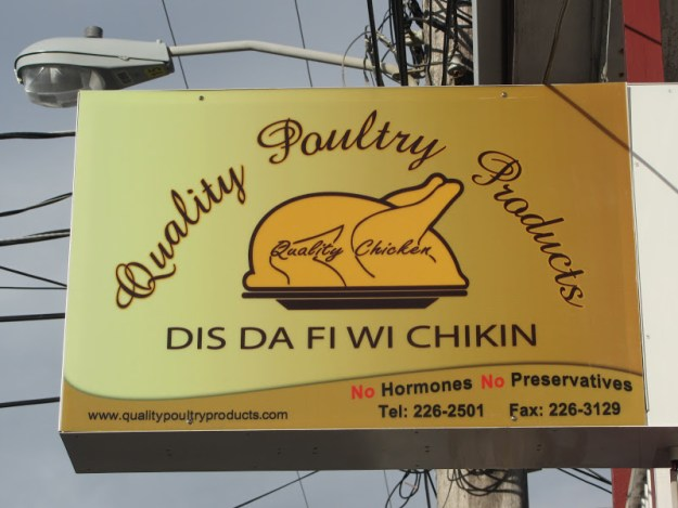This is the chicken for we!