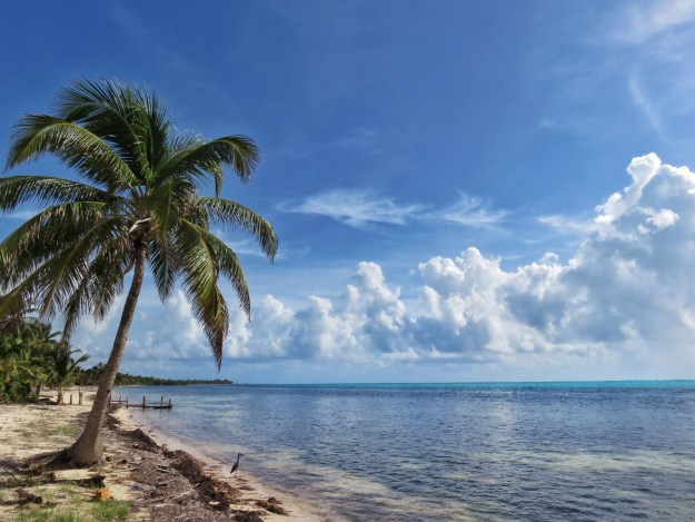 7 miles north Ambergris Caye Belize
