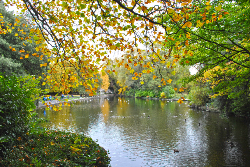 Fall in St. Stephen's green