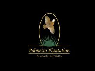 Palmetto Quail Plantation