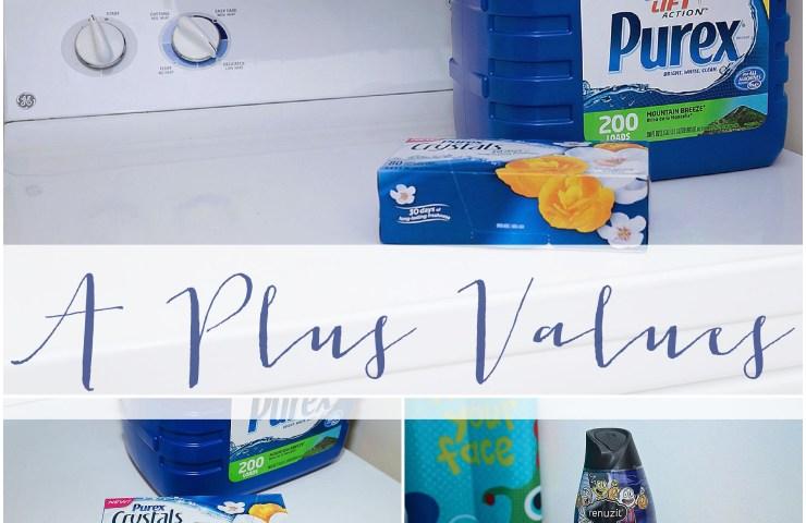A Plus Values   Household Savings