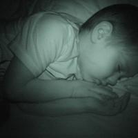 sleepingturkey 003_edit