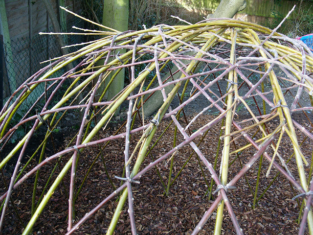 Willow, hazel and soft structures