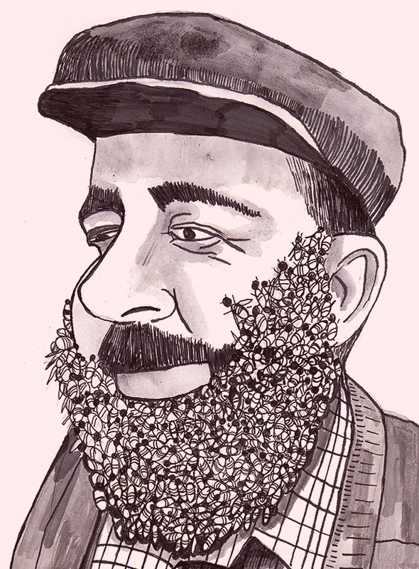 bee beard_web