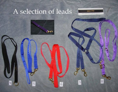 A selection of SASS Dog Leads