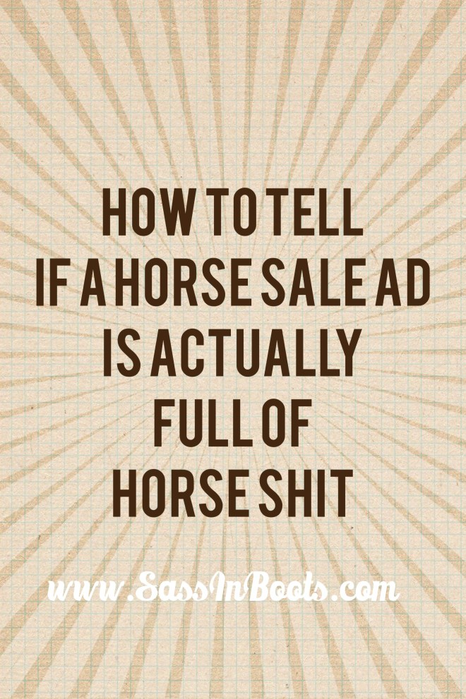 How to decipher horse sale ads