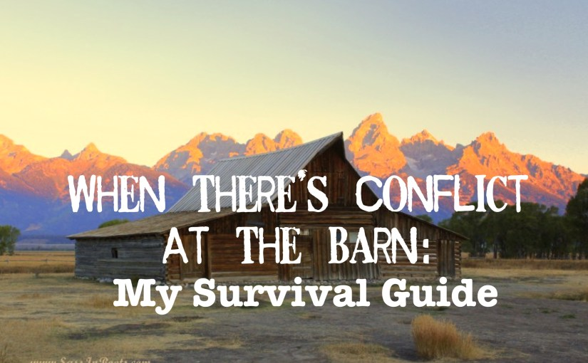 When There's Conflict At The Barn: My Survival Guide