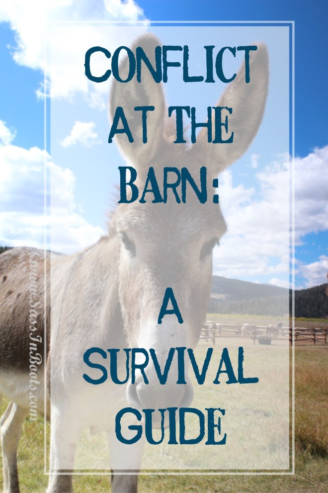 conflict-at-the-barn-an-excellent-survival-guide-to-get-you-through