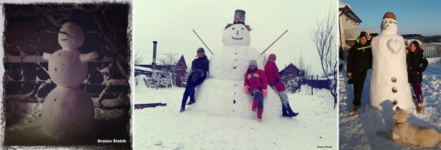 naj snjegović