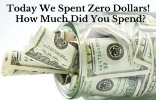 Today We Spent Zero Dollars!  How Much Did You Spend?