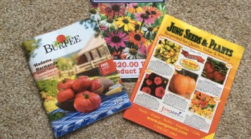 Enjoying Your Seed Catalogs