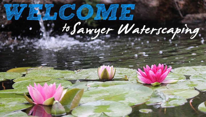 Welcome-image-s_dub