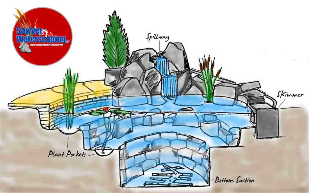 Pond_Diagram