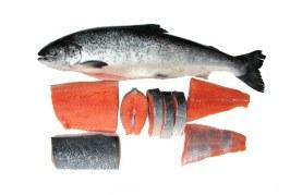 اصطادي وتناولي الأسماك الدهنية لانها عدوة سرطان الثدي