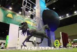 مهرجان الشيخ منصور بن زايد للخيول العربية أيقونة معرض الصيد والفروسية