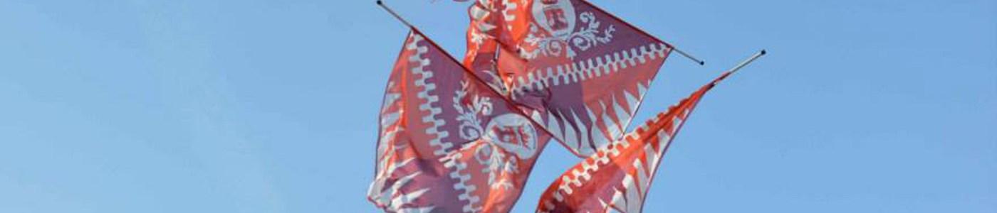 Scuola di bandiera